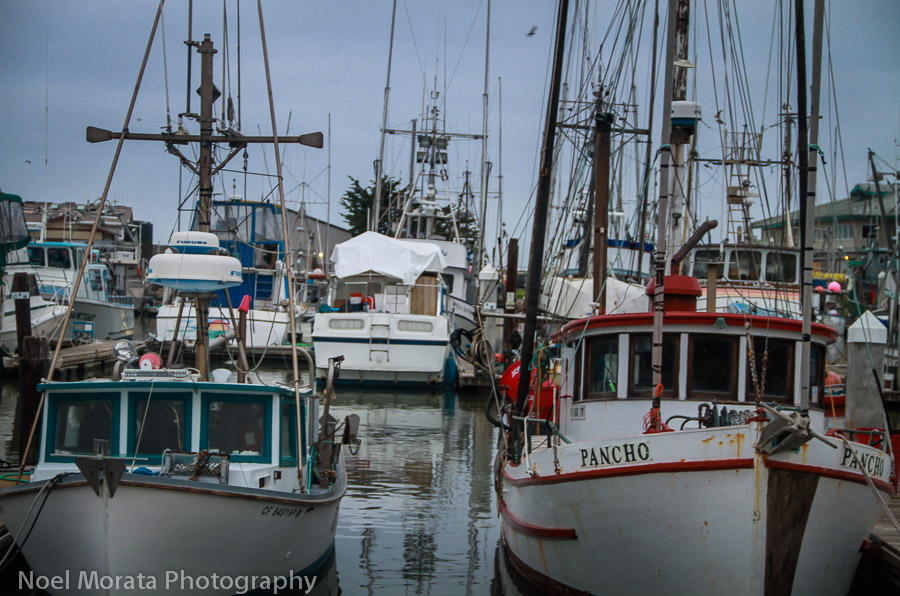 Cool fishing vessels at the harbor in Moss Landing