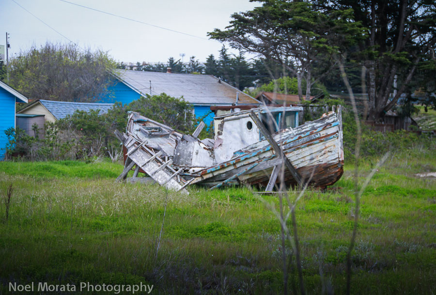 A fishing boat gone to pasture in Moss Landing