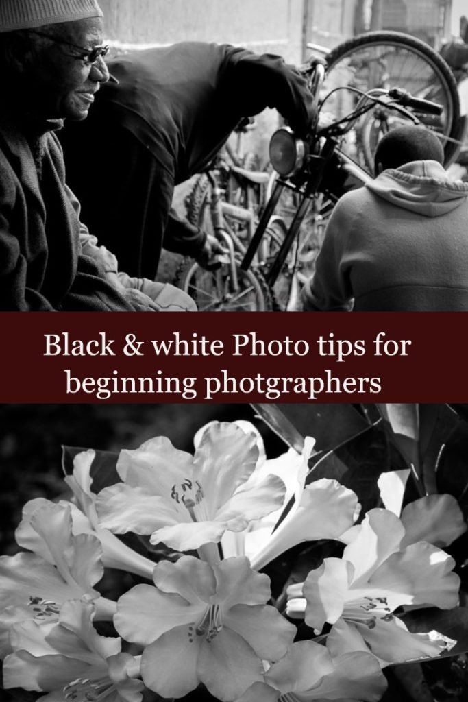 Black and white photo tips for beginners