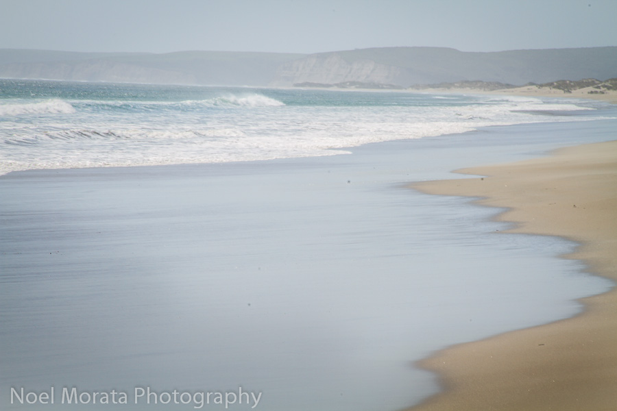 Sandy beaches at Drakes Bay