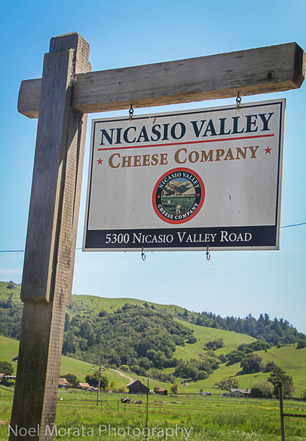 Nicasio Valley Creamery on Novato Blvd.