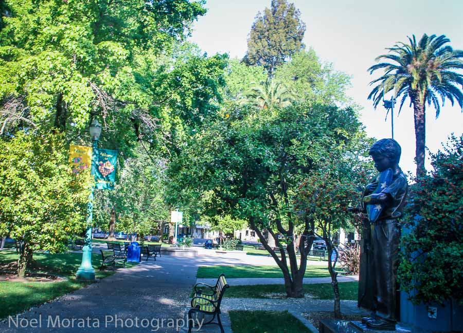 Healdsburg's central plaza, an oasis of green