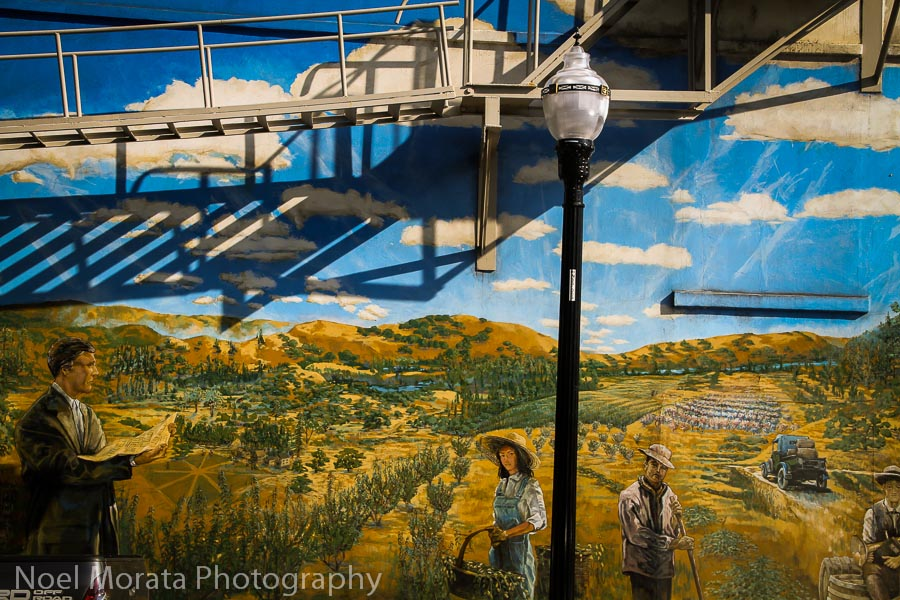 Depicting the  landscape of Healdsburg and Sonoma country