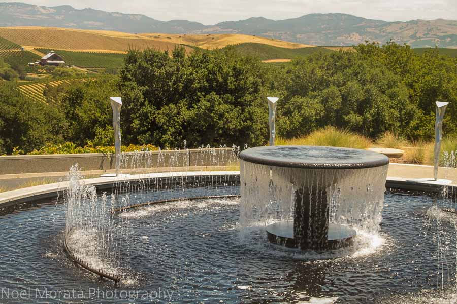 Entry fountain and sculpture at Artesa Winery