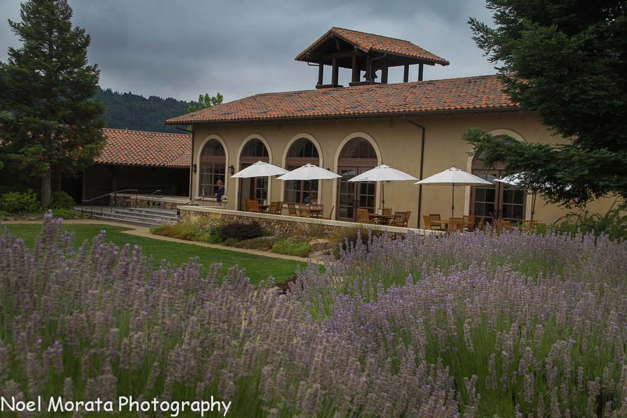 Lavendar with St. Francis tasting room