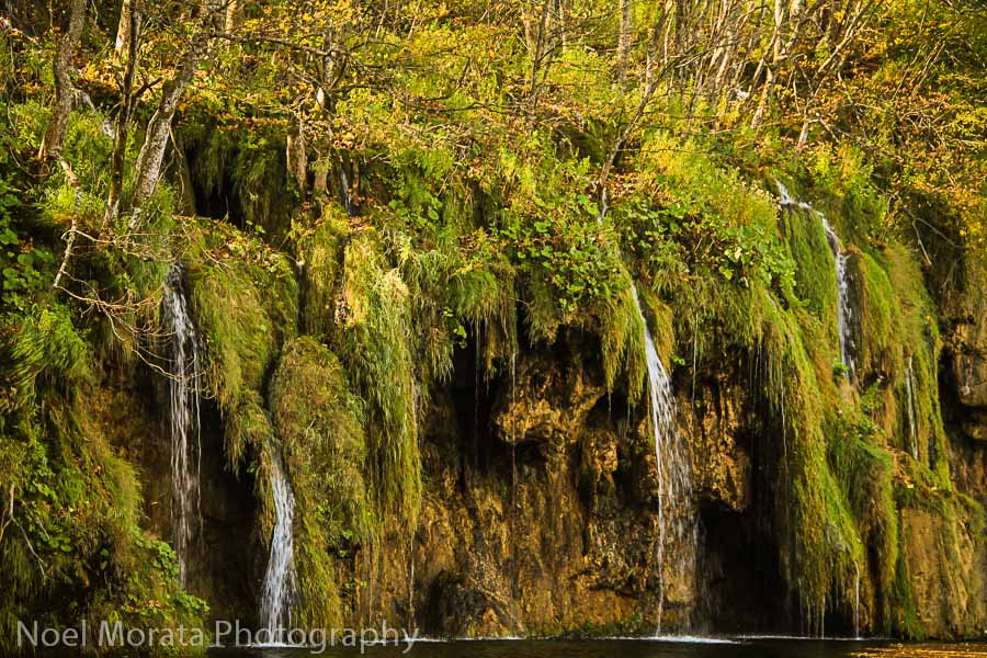 Moss and fountains at Plitvice