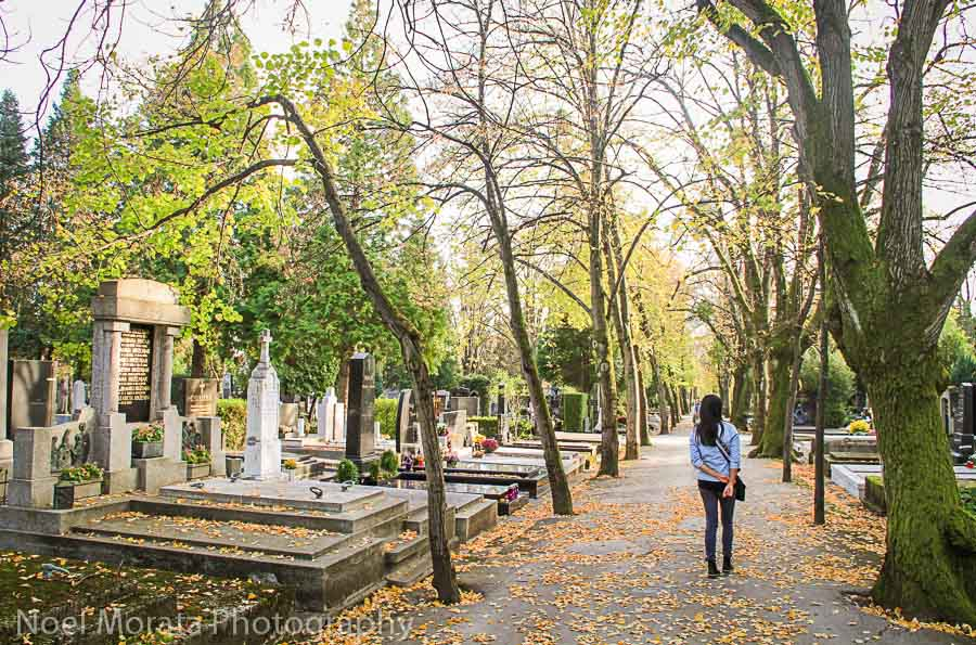 The outdoor grounds of Mirogij cemetery in Zagreb