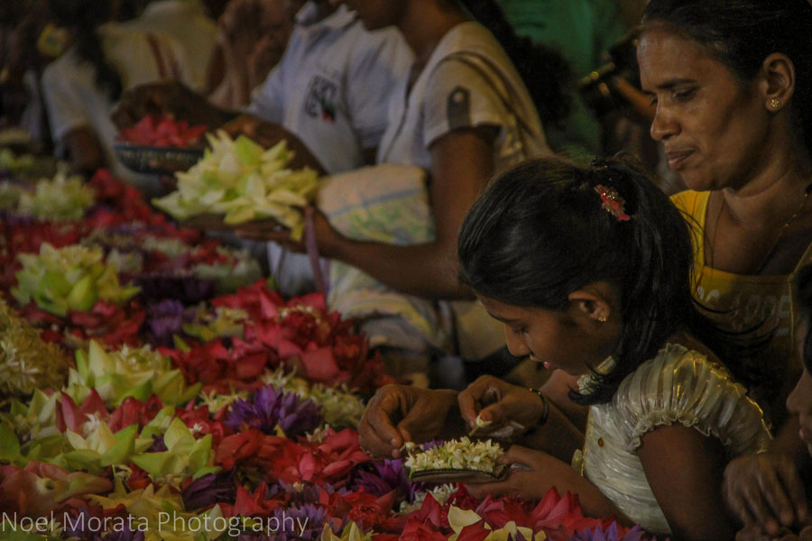 Flower offerings at the Temple of the Tooth in Kandy