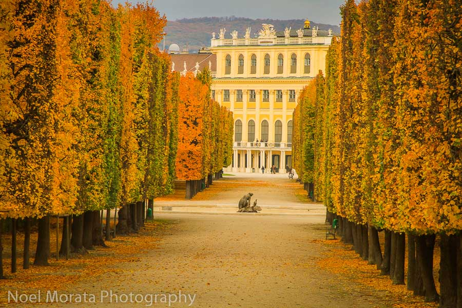 Fall time at Schonbrunn-gardens