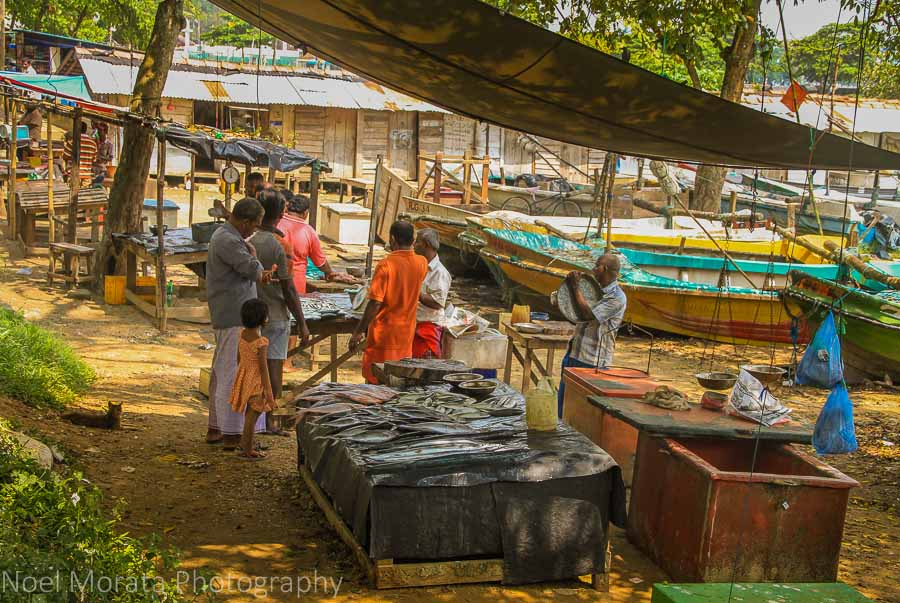 Fish market on the beach at Galle