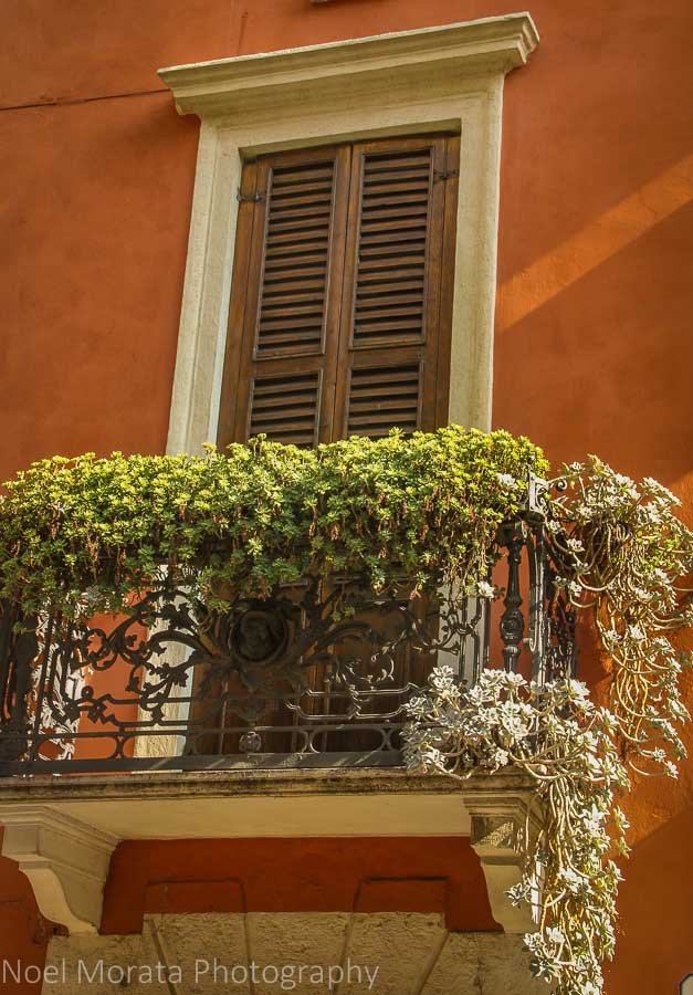Flower and ironwork details in Verona