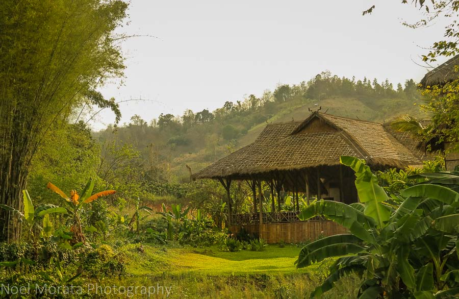 Hill Tribe Eco Lodge and cooking holiday and tea plantation tour ...