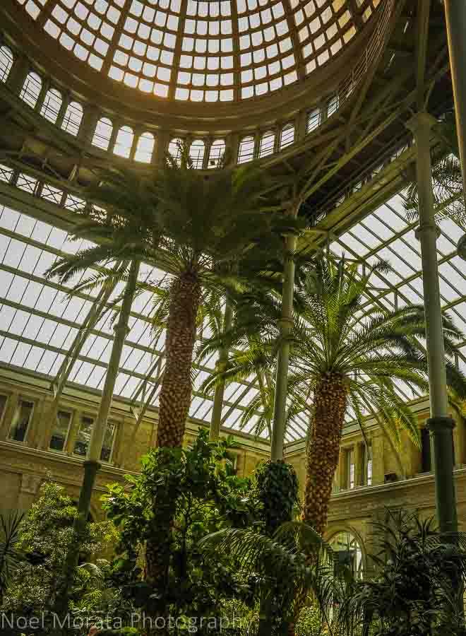 Atrium garden and entrance at the Glyptotek museum, Copenhagen