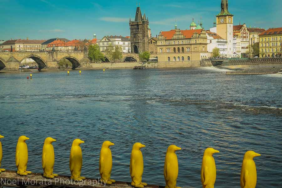 A penguin installation at Kampa park and facing Vltava river