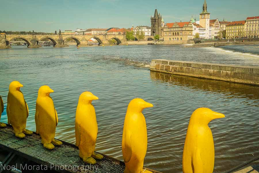 Prague's public and street art scene