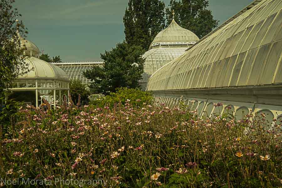 Phipps conservatory - A first impression of Pittsburgh