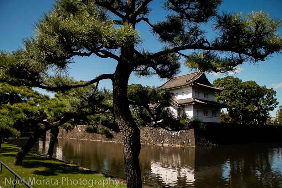 Imperial Palace in Tokyo - Best places to photograph Tokyo