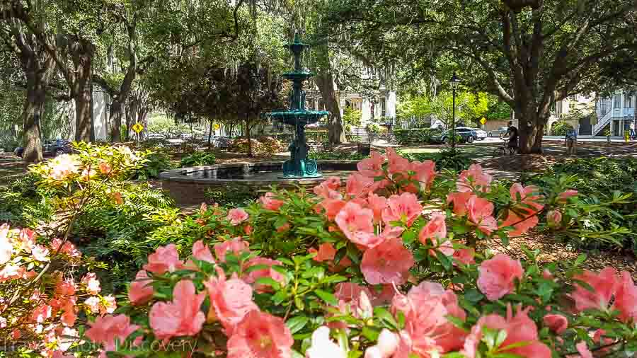Visit Savannah in 48 hours