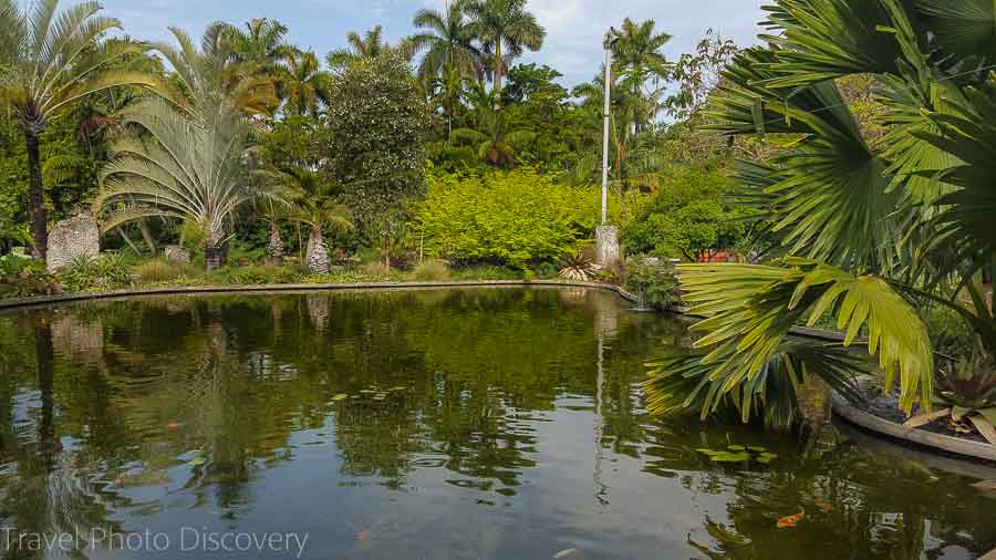 Natural pond Visit Miami, Miami Beach Botanical Garden
