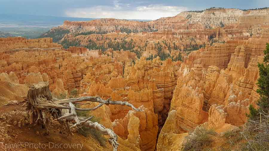 Bryce Canyon National Park overlook