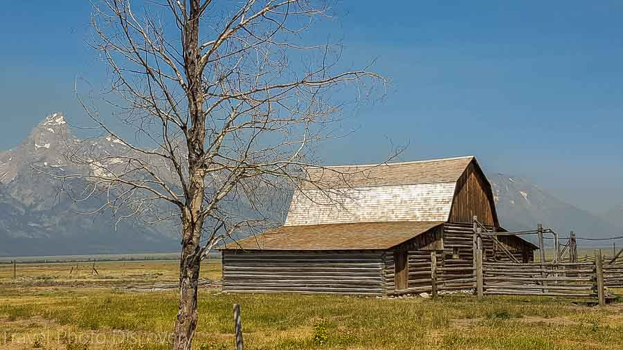 Mormon settlement Wildlife tour at Grand Teton National Park