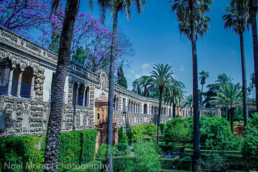Travel Photo Discovery top posts Alcazar in Seville