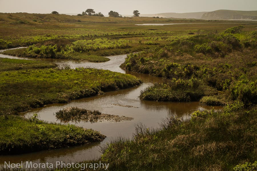 Estuary at Point Reyes National Seashore Top road trips USA