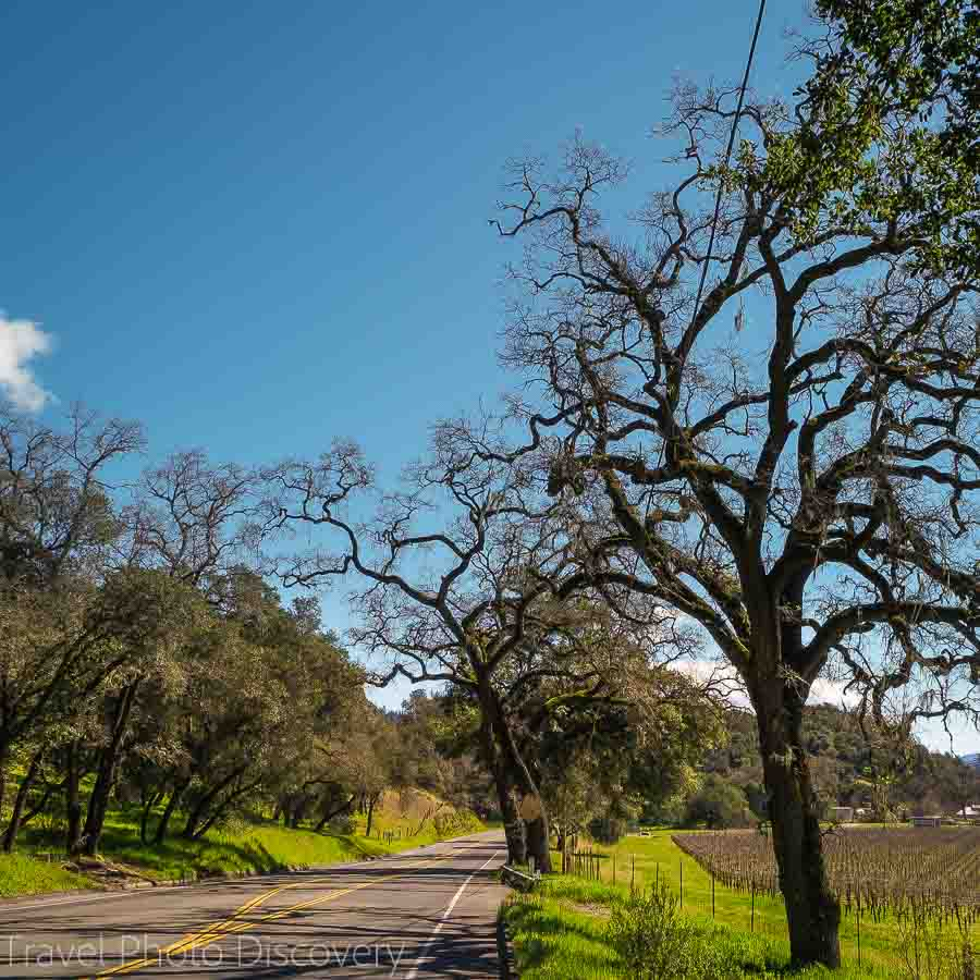 A drive along the Silverado trail, Napa Valleys alternate backroad through the valley