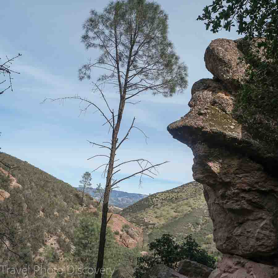 Interesting rock formations at Pinnacles National Park