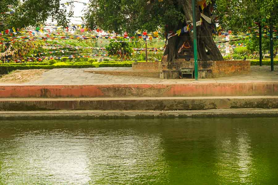 Lumbini gardens, birth pond and Bodhi tree at the holy site