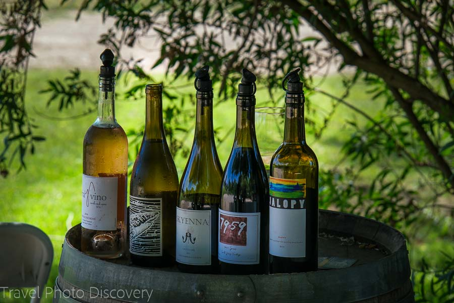 Outdoor wine tasting around Santa Barbara county