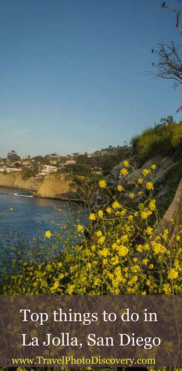top things to do in La Jolla, San Diego