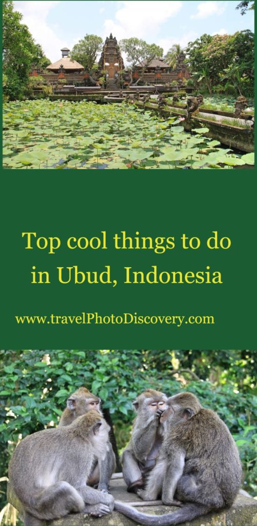 top things to do in ubud, indonesia