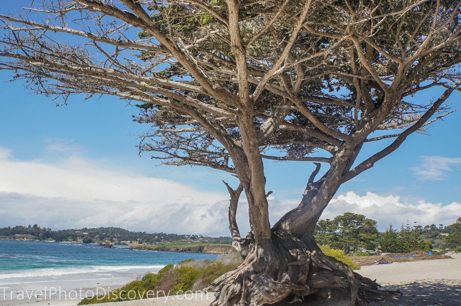 Weekend getaway to Carmel by the Sea