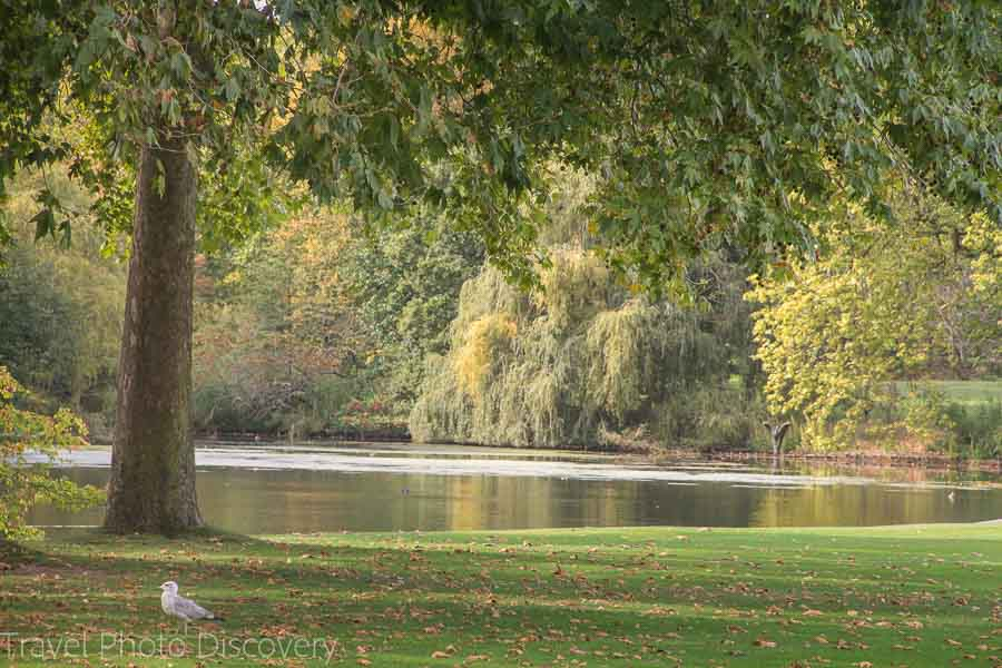 Free parks to explore in London