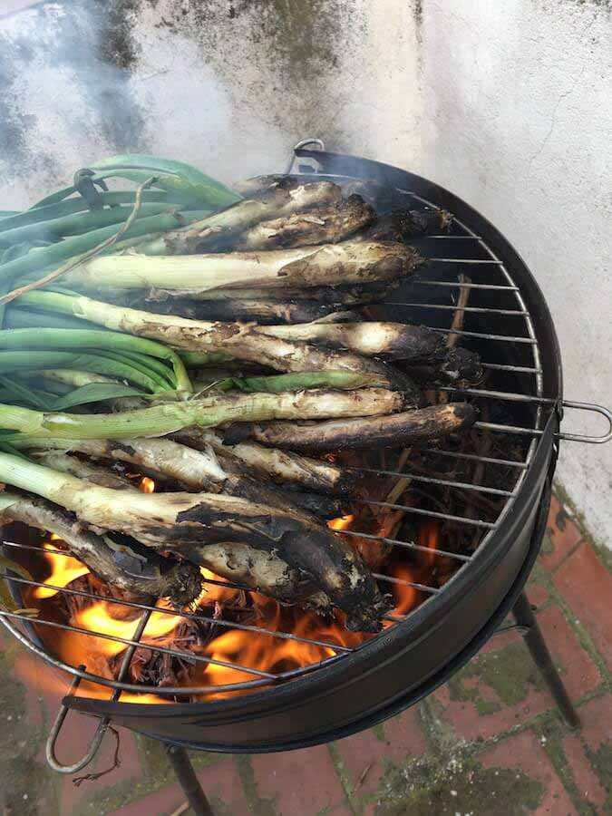 Catalunya foods and Calcots