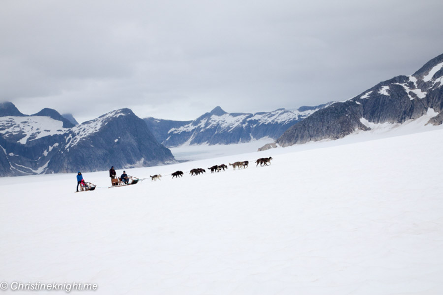 dog-sledding adventure in Alaska