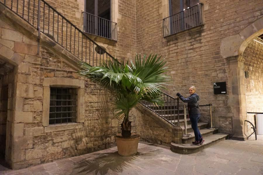 Courtyard of the Picasso Museum in Barcelona