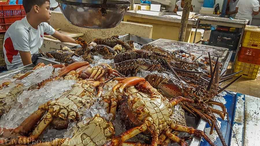Panama-city-seafood-market-things to do in Panama
