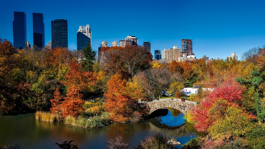 central-park-autumn NYC