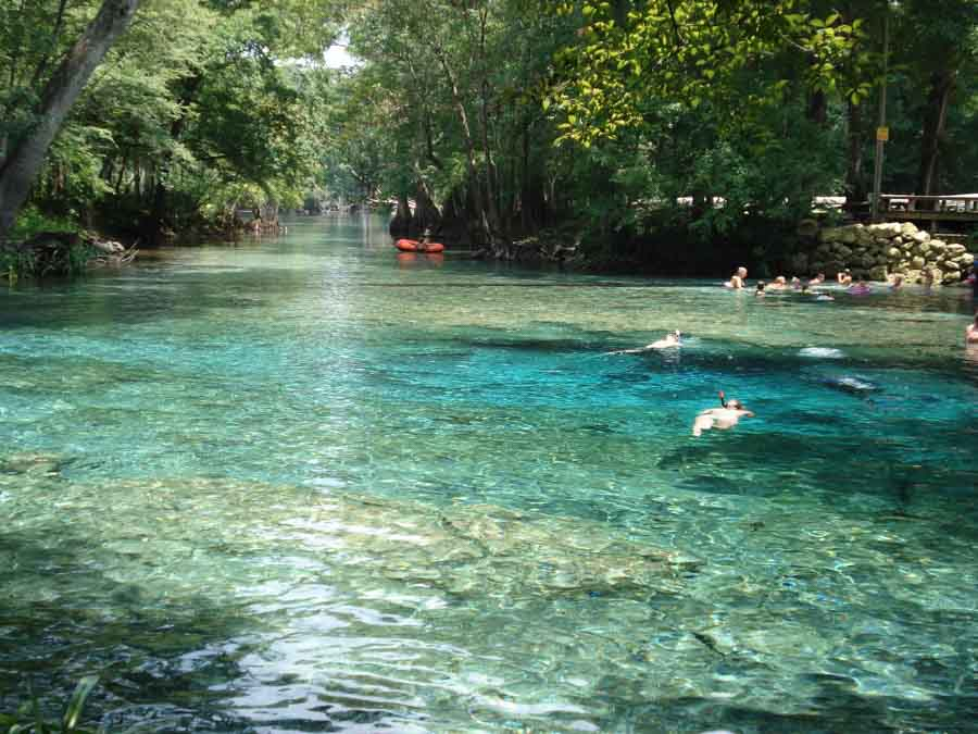 Ginnie_Springs in Central Florida