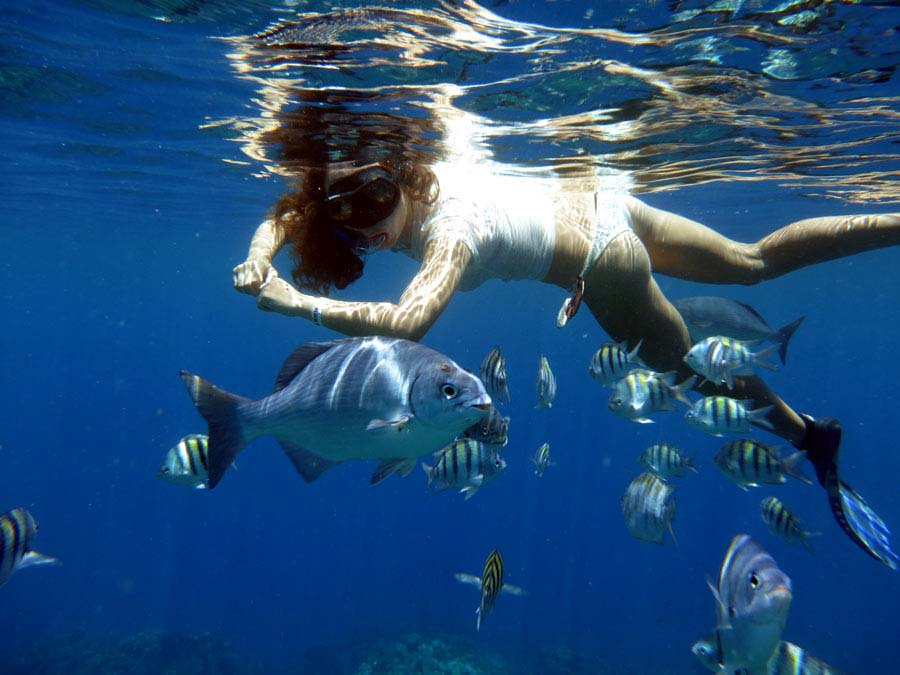 snorkeling-at-West-End-Beach