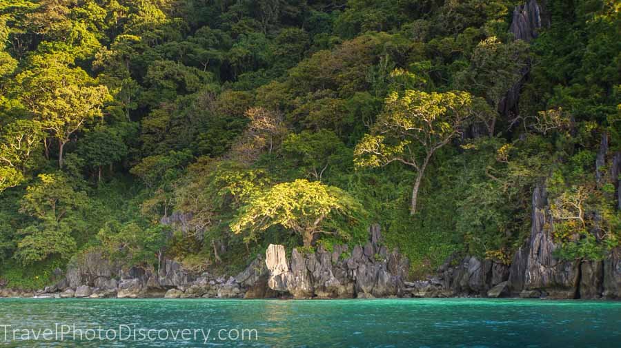 ElNido green.landscapes