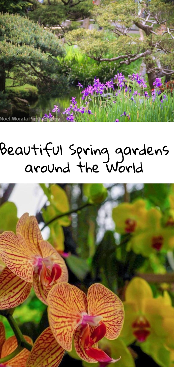 Spectacular Spring gardens around the world