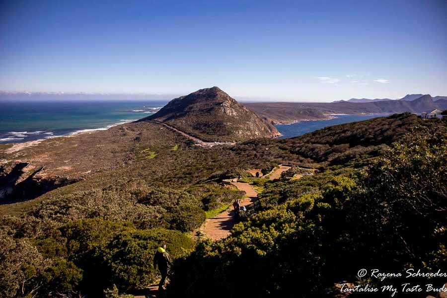 Cape-Point-scenic capture