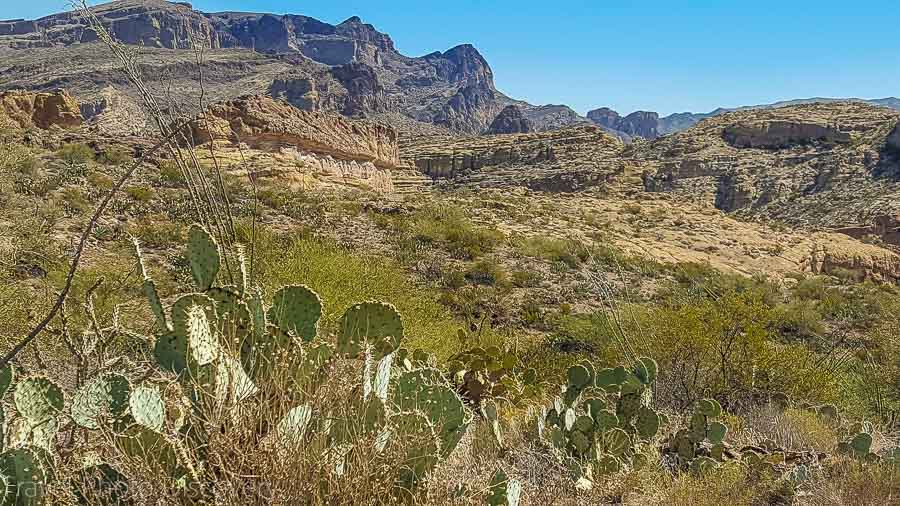 Top Arizona Road Trips