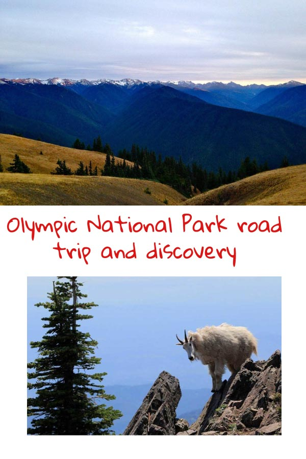 Pinterest Olympiv National Park road trip and discovery
