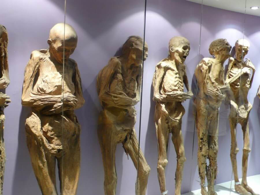 a bunch of mummies