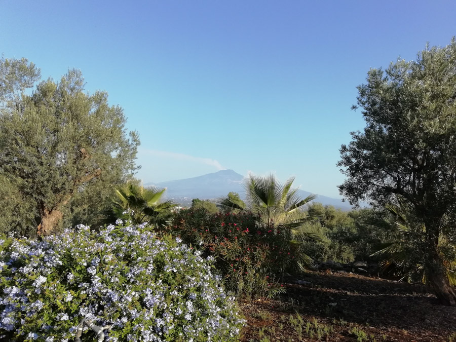 the-best-places-in-italy-catania-mount-etna