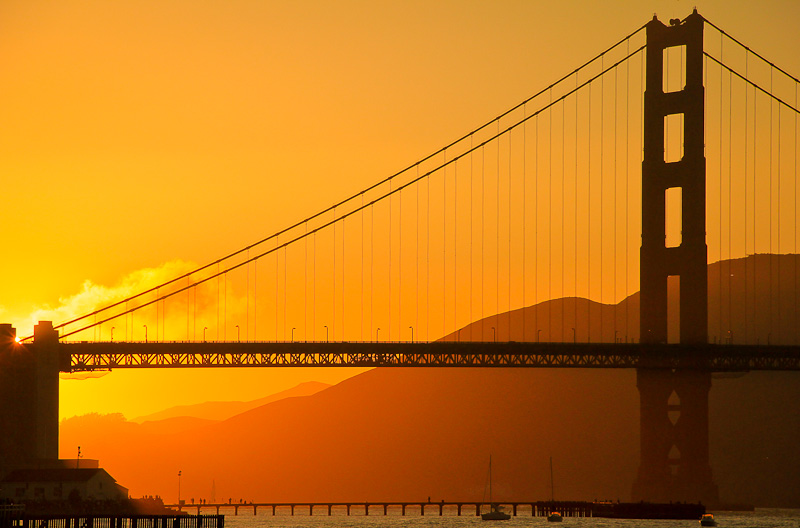 Visit Chrissy Field area by the Golden Gate Bridge and enjoy some fantastic views of the bay